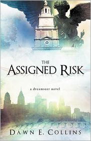 The Assigned Risk: A Dreamseer Novel