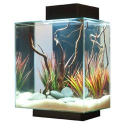 Fluval Edge Aquarium Black 42 LED, 12 Gallon