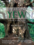 The gnarled, immutable yew tree is one of the most evocative sights in the British and Irish language, an evergreen impression of immortality, the tree that provides a living botanical link between our own landscapes and those of the distant past