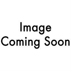 Wyse 909569-14L Dell Wyse P25 Zero Client - DTS - 1 x Tera2321 - RAM 512 MB - Flash 32 MB - no HDD - Gigabit LAN - Windo