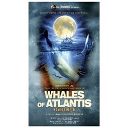 Whales Of Atlantis: In Search Of Atlantis [Blu-ray] [Blu-ray] (2010)