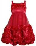 Red Bonaz Rosette Mesh Bubble Dress RD4MHBonnie Jean Tween Girls Special Occasion Flower Girl BNJ Social Dress, Red