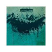 Dead Flesh Fashion - Anchors (Music CD)