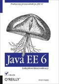 <p>Korporacyjna wersja Javy (JEE, od ang