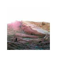 Tamaryn - The Waves (Music CD)