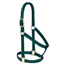 Weaver Basic Non-Adjustable Nylon Halter Small Horse/Weanling Draft Hunter Green
