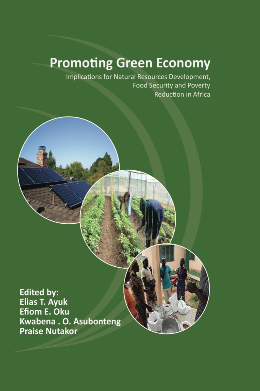 Promoting Green Economy (ebook)