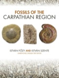 István Fozy and István Szente provide a comprehensive review of the fossil record of the Carpathian Basin
